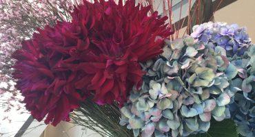 ☆今週のお花☆